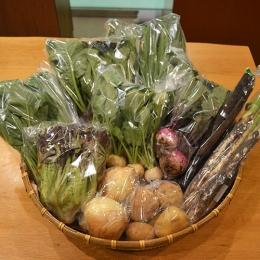 野菜セット(大)